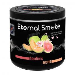 HOUDINI'S SECRET